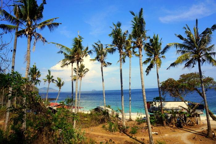 indonésie 3 semaines