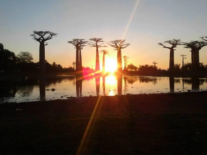 Itinéraire Madagascar – virée sur l'île rouge entre ciel et mer
