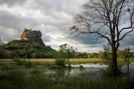 Sri-Lanka-5-sur-19