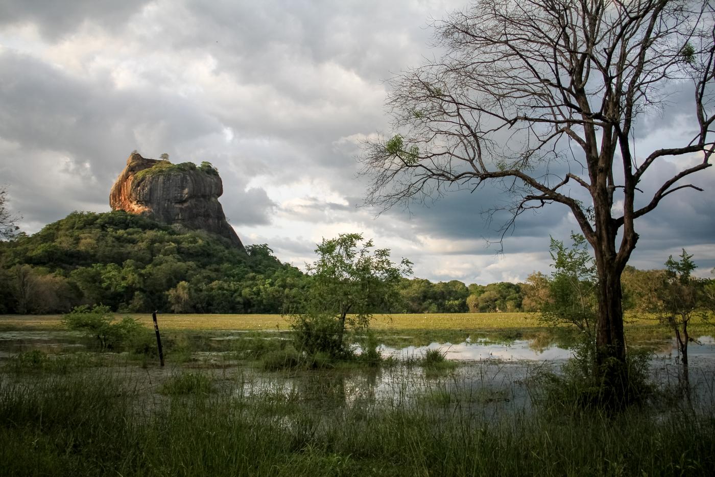 Sri Lanka : 2 semaines pour faire le tour de l'île