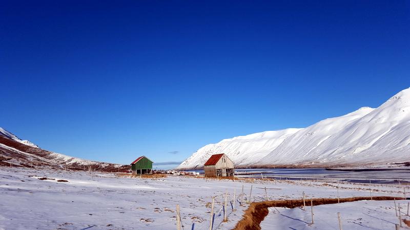 Le tour de l'Islande - 12 jours en mars