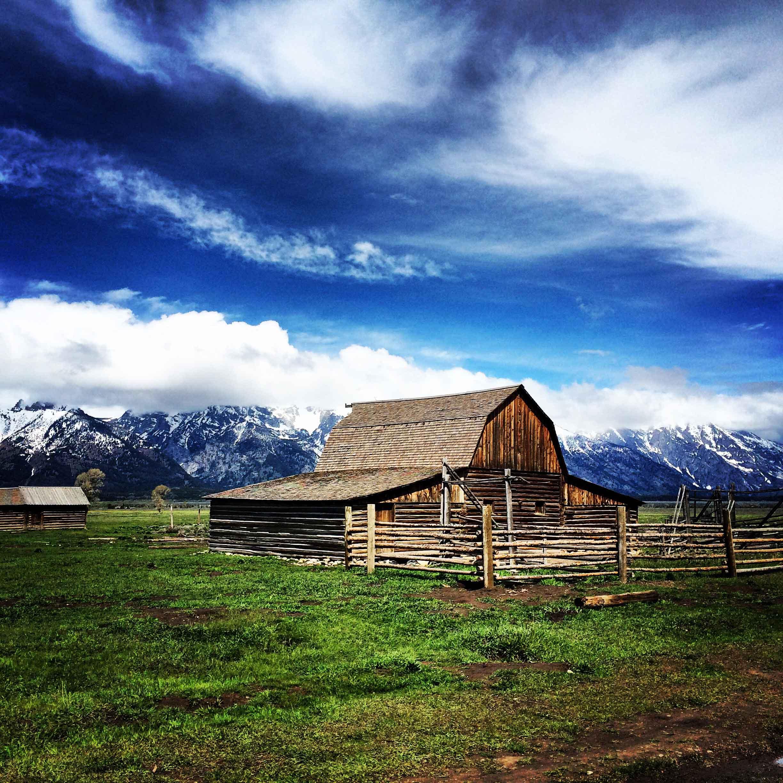 Etats Unis: 4 Jours Yellowstone et Grand Teton