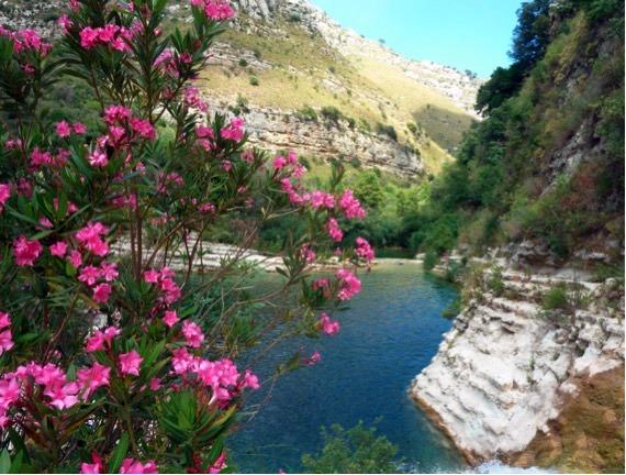 piscine naturelle de Noto