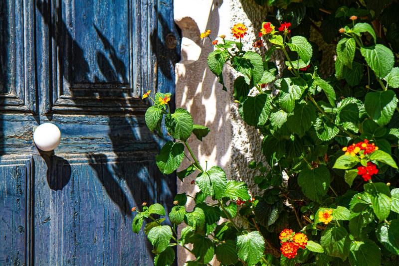 1 mois d'août en Provence